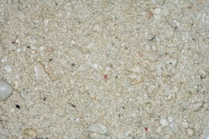 CaribSea Ocean Direct Oolite