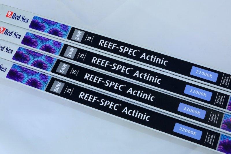 RedSea REEF SPEC - Actinic 22000K